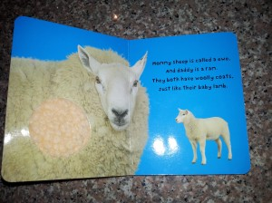 The baby book page with a sheep on it.  It has a spot made of wool.