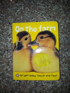 On the Farm: A Touchy-Feely Book for Babies