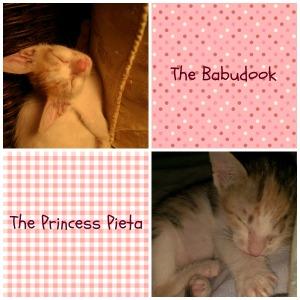 ReadinginBetween_Babu and Pieta